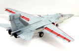 Hasegawa EF-111A Raven