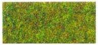 busch_grass_3